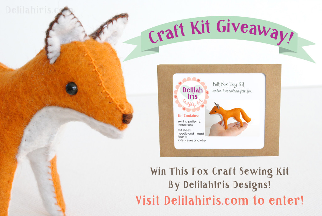 foc diy craft kit giveaway